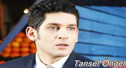 tansel-ongel-biyografi